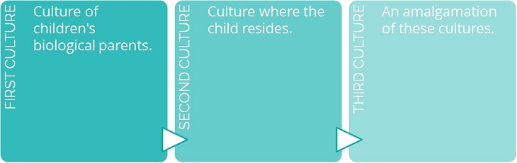 A third culture kid infographic