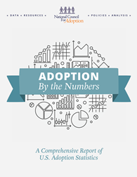 The cover for Adoption by the Numbers