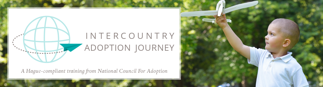 itercountry adoption journey